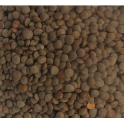 Lentils Brown whole masoor Small 2kg