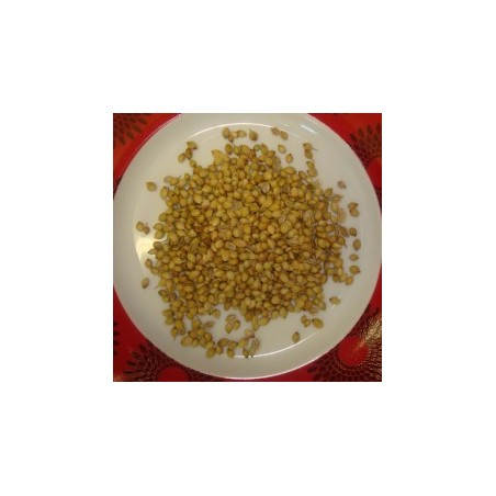 Dhaniya Indori Whole Corriander Seeds 100g