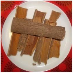 Tuj Cinnamon sticks Grade 1