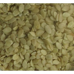 Char Magaz Melon Seeds