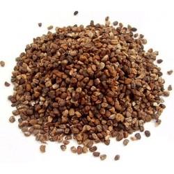 Cardamom Elaichi Seeds 700g