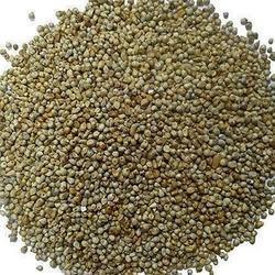 Bajri Seeds Millet 1.5kg