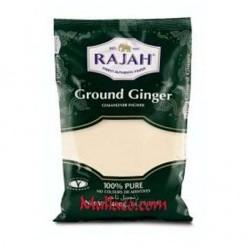 Ginger Ground rajah